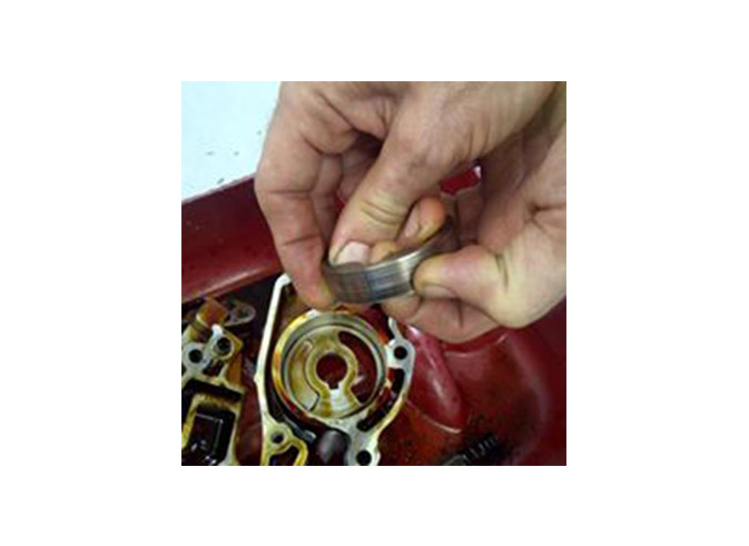 Timing chain guides